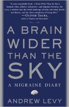 Andrew Levy – A Brain Wider Than The Sky
